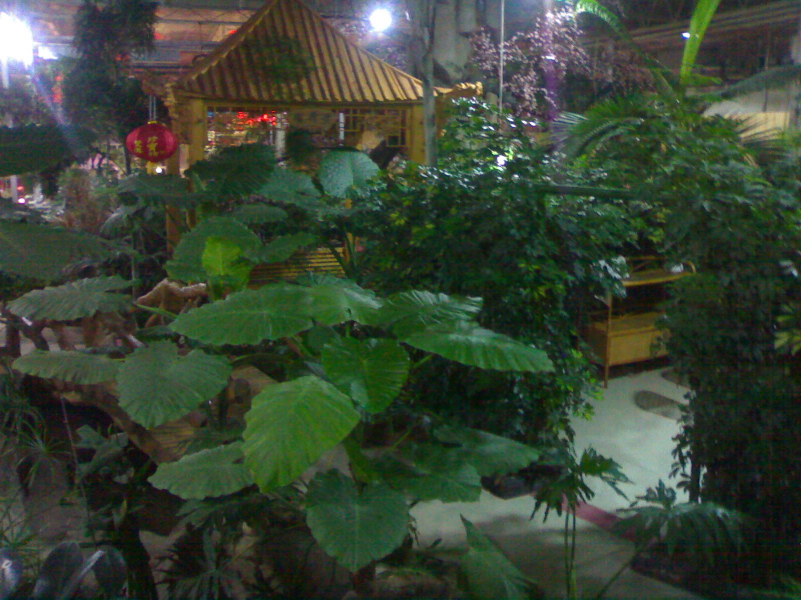 [贴图][原创]老虎山生态园(美景美食)|食在威海
